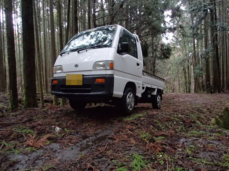 4WD Sambar off road import from Japan